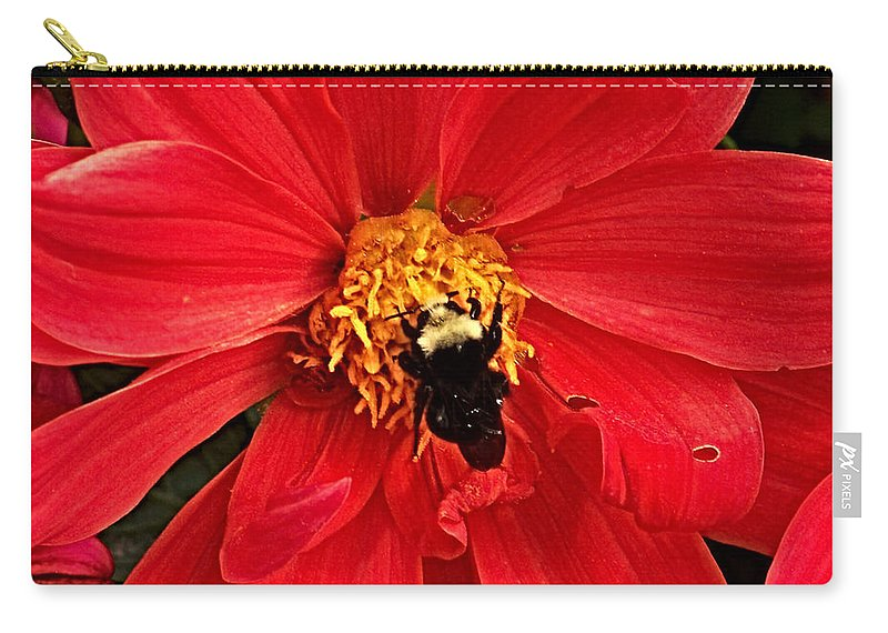 Flower Carry-all Pouch featuring the photograph Red Flower And Bee by Anthony Jones