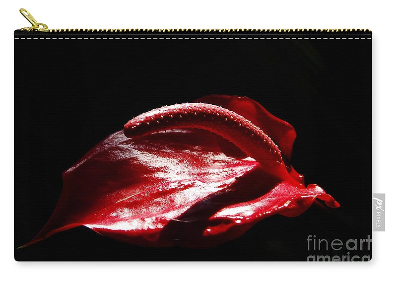 Red Flower Carry-all Pouch featuring the photograph Red Flower by David Lee Thompson