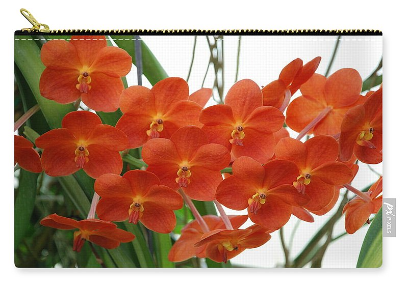 Macro Carry-all Pouch featuring the photograph Red Flowers by Rob Hans