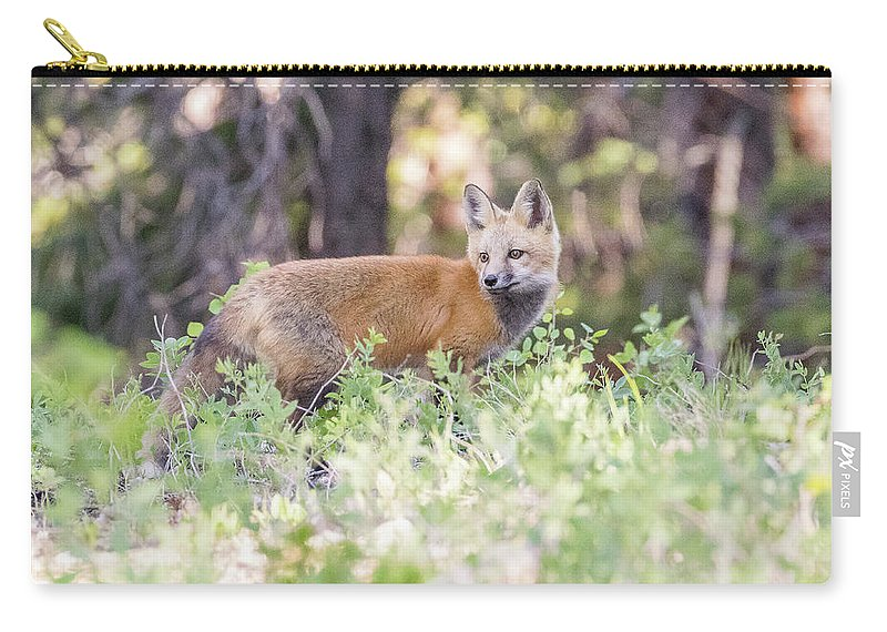 Fox Carry-all Pouch featuring the photograph Red Fox Kit Looking For Mom by Tony Hake