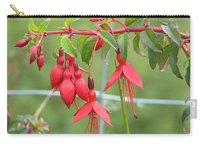 Fresia Carry-all Pouch featuring the photograph Red Fresia by Kelly Mezzapelle
