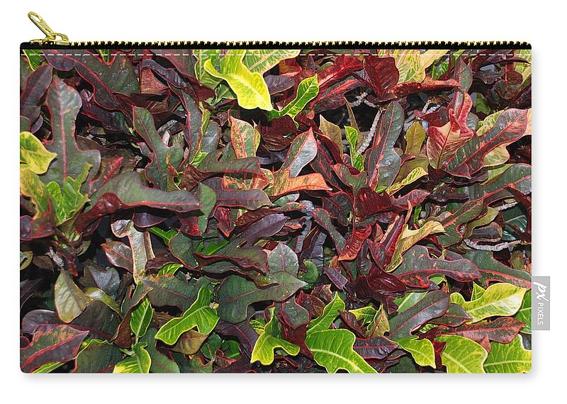 Macro Carry-all Pouch featuring the photograph Red Green Leaves by Rob Hans