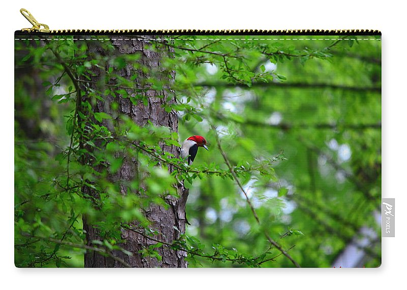 Red Headed Woodpeckers Carry-all Pouch featuring the photograph Red Headed Beauty by Lisa Wooten