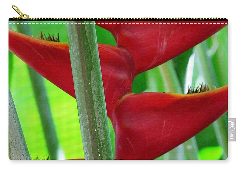 Red Flowers Carry-all Pouch featuring the photograph Red Heliconia by Mary Deal
