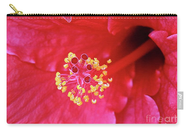 Red Hibiscus Macro Carry-all Pouch featuring the photograph Red Hibiscus 3 by Elisabeth Lucas