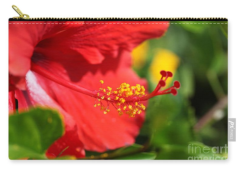 Flowers Carry-all Pouch featuring the photograph Red Hibiscus and Green by Nadine Rippelmeyer