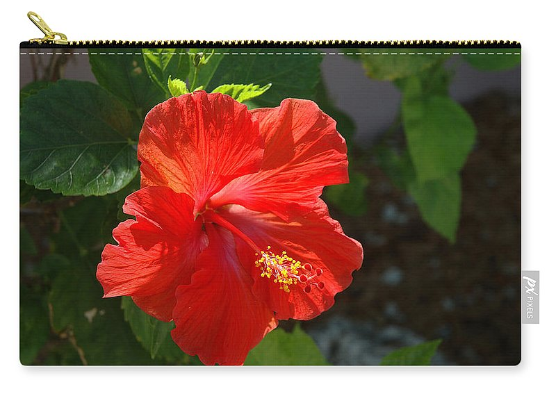 Hibiscus Carry-all Pouch featuring the photograph Red Hibiscus II by Susanne Van Hulst