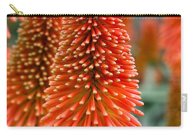 Flower Carry-all Pouch featuring the photograph Red-hot Poker Flower Kniphofia by Louise Heusinkveld