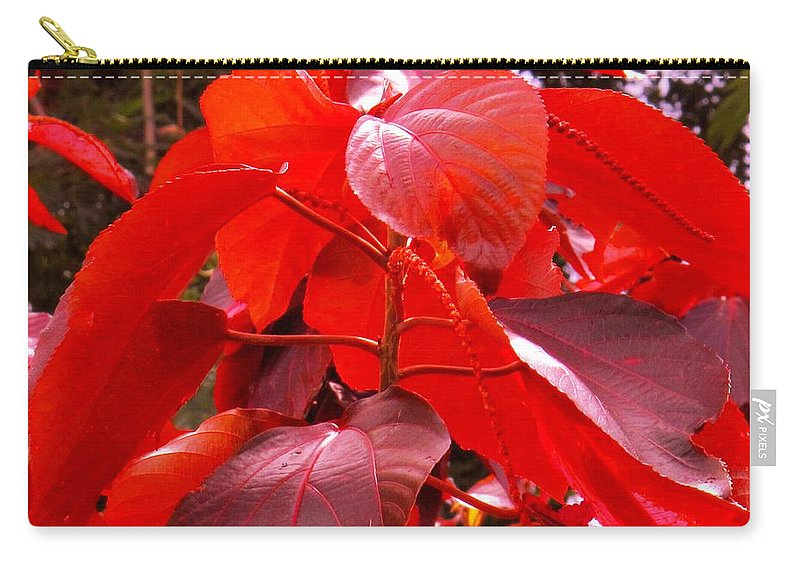 Red Carry-all Pouch featuring the photograph Red by Ian MacDonald