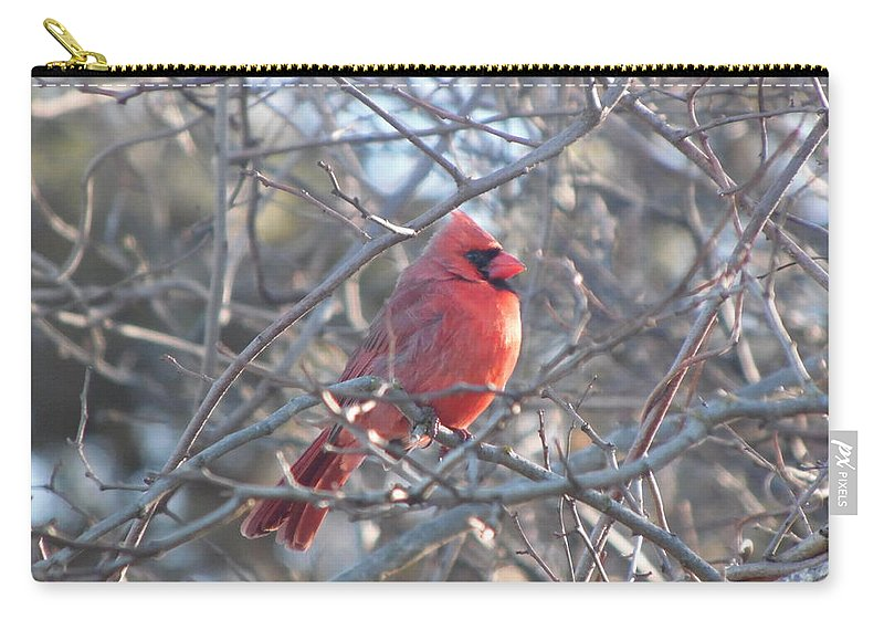 Birds Carry-all Pouch featuring the photograph Red by Julie Houle