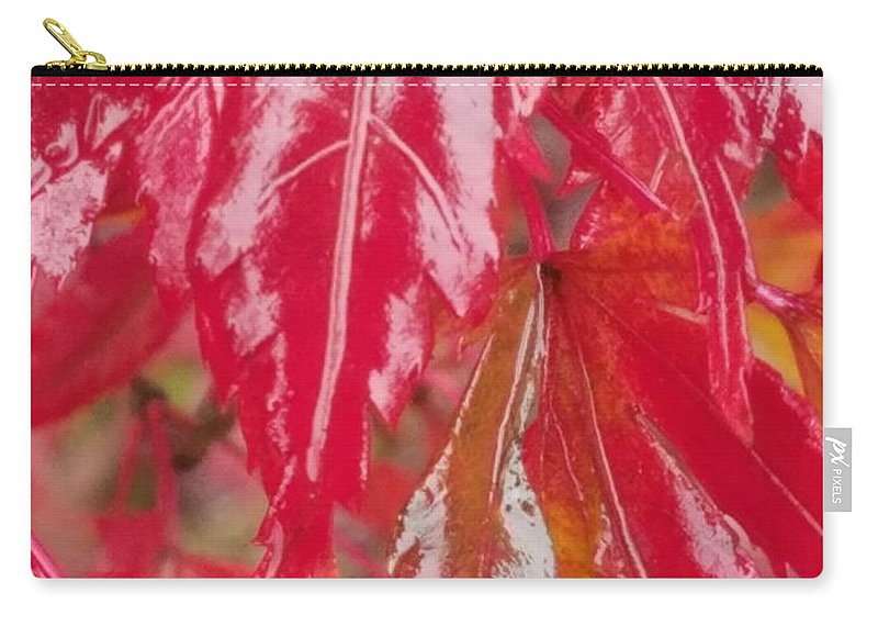 Red Leaf Abstract Carry-all Pouch featuring the photograph Red Leaf Abstract by Maria Urso