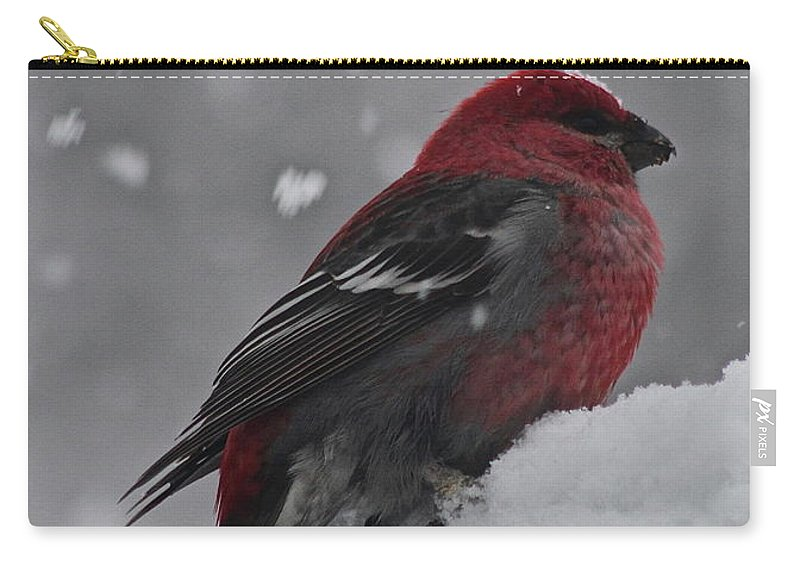 Bird Carry-all Pouch featuring the photograph Red On White by Rick Monyahan