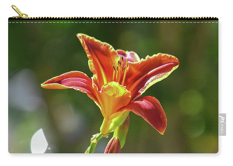 Linda Brody Carry-all Pouch featuring the photograph Red Orange Day Lilies I by Linda Brody