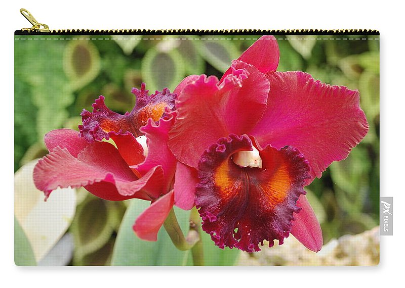 Macro Carry-all Pouch featuring the photograph Red Orchid by Rob Hans