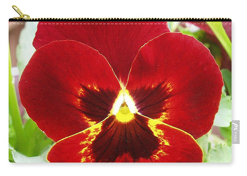 Red Carry-all Pouch featuring the photograph Red Pansy by Nancy Mueller