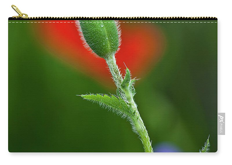 Poppy Carry-all Pouch featuring the photograph Red Poppy Bud by Heiko Koehrer-Wagner