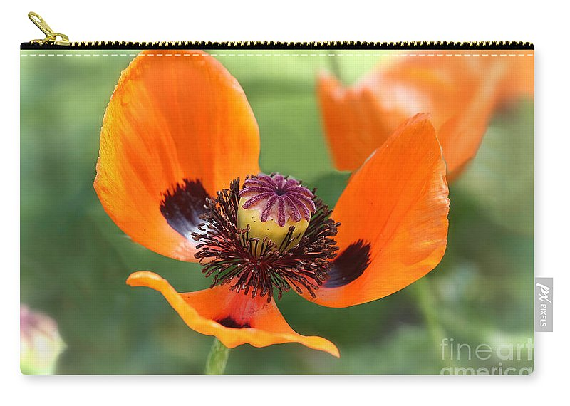 Flower Carry-all Pouch featuring the photograph Red Poppy I by Teresa Zieba