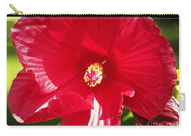 Flower Carry-all Pouch featuring the photograph Red by Robert Knight