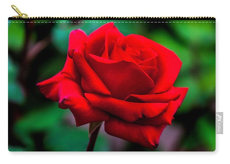Spring Flowers Carry-all Pouch featuring the photograph Red Rose 2 by Az Jackson