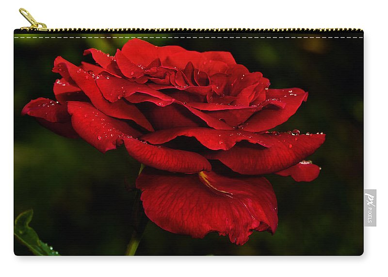 Rose Carry-all Pouch featuring the photograph Red Rose by Christopher Holmes