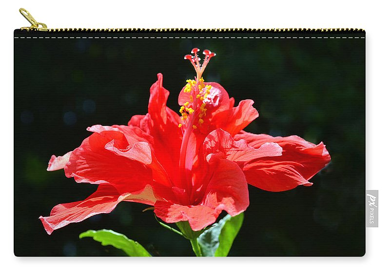 Hibiscus Carry-all Pouch featuring the photograph Red by Sandi OReilly