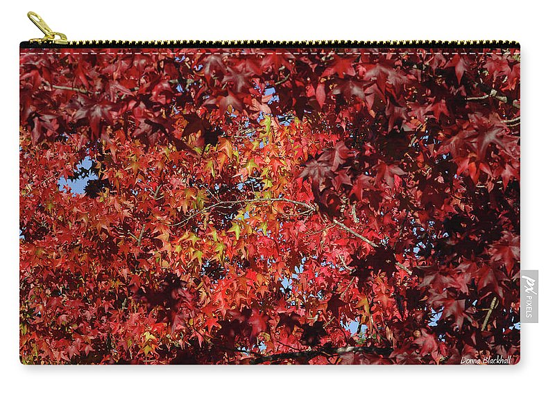 Red Leaves Carry-all Pouch featuring the photograph Red Sea by Donna Blackhall