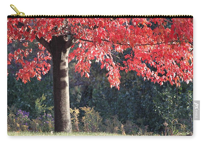 Fall Carry-all Pouch featuring the photograph Red Shade Tree by Lauri Novak