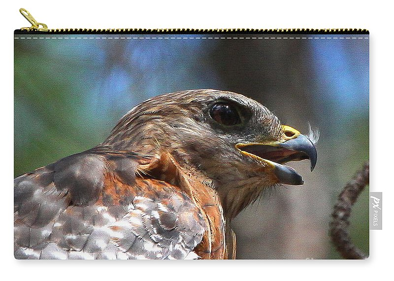 Red Shouldered Hawk Carry-all Pouch featuring the photograph Red Shouldered Hawk - Profile by Barbara Bowen
