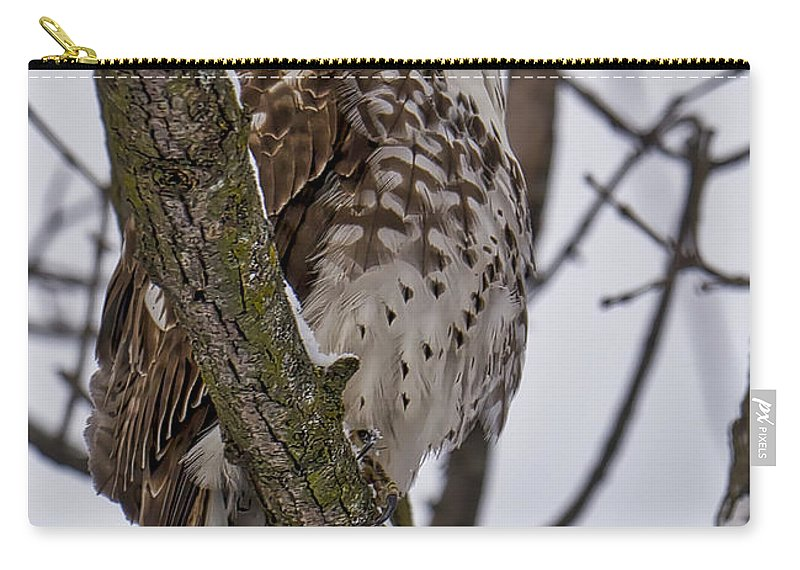 Bird Carry-all Pouch featuring the photograph Red Shouldered Hawk - Madison - Wisconsin by Steven Ralser