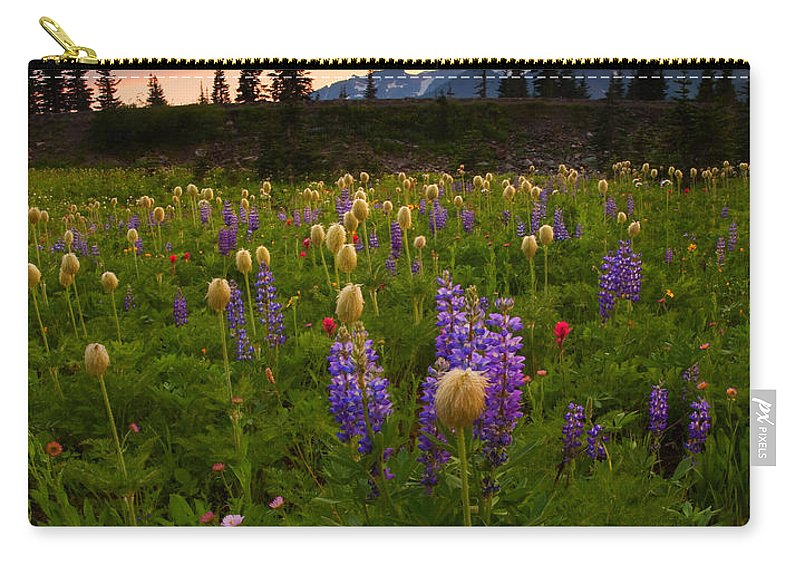 Anenome Carry-all Pouch featuring the photograph Red Sky Meadow by Mike Dawson