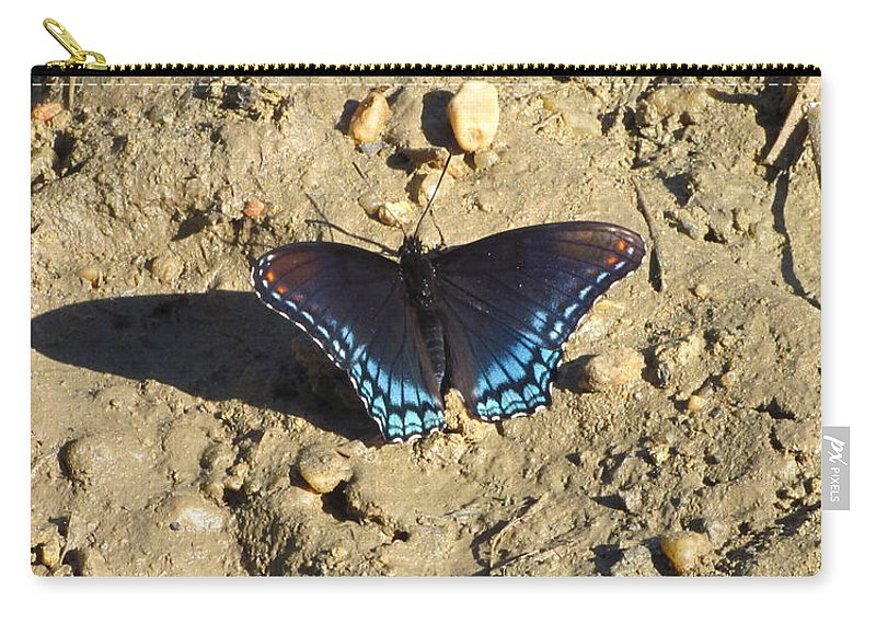 Red Spotted Purple Astyanax Butterfly Images Maryland Butterfly Images Red Spotted Purple Photo Prints Astyanax Prints Nature Butterfly Images Forest Ecosystem Biodiversity Carry-all Pouch featuring the photograph Red Spotted Purple Astyanax by Joshua Bales