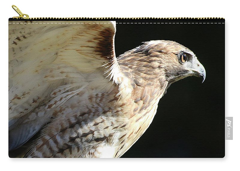 Wildlife Carry-all Pouch featuring the photograph Red-tailed Hawk In Profile by William Selander