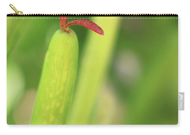 Succulent Carry-all Pouch featuring the photograph Red Tongue by Erin Donalson