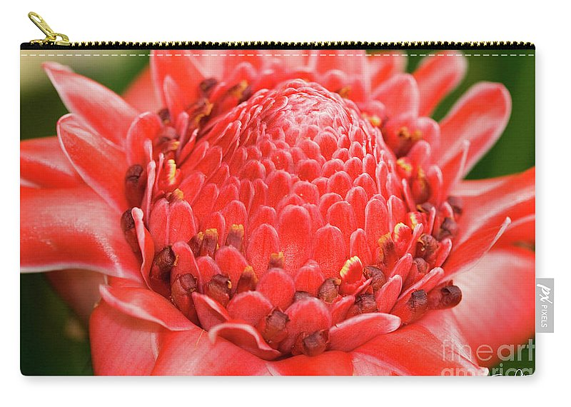 Bot Carry-all Pouch featuring the photograph Red Torch Ginger by Scott Pellegrin