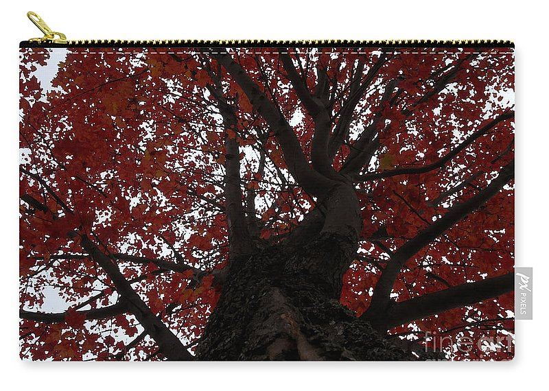 Fall Carry-all Pouch featuring the photograph Red Tree by David Lee Thompson