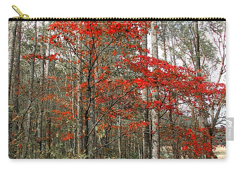 Landscape Carry-all Pouch featuring the photograph Red Tree by Todd Blanchard