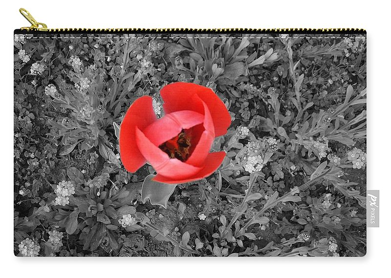Red Tulip Photography Carry-all Pouch featuring the photograph Red Tulip From Above by Georgeta Blanaru