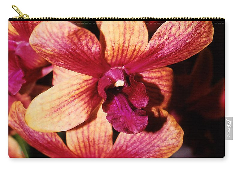 Orchid Carry-all Pouch featuring the photograph Red Twins by Susanne Van Hulst