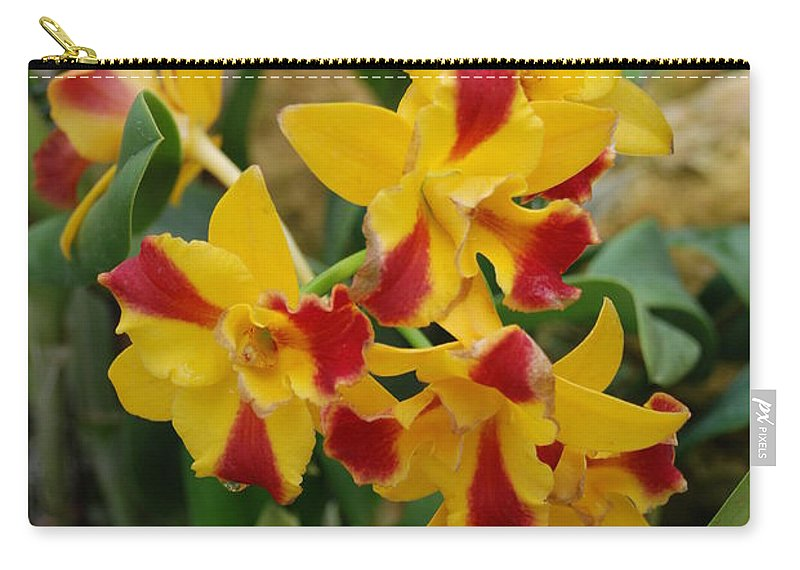 Macro Carry-all Pouch featuring the photograph Red Yellow Orchids by Rob Hans