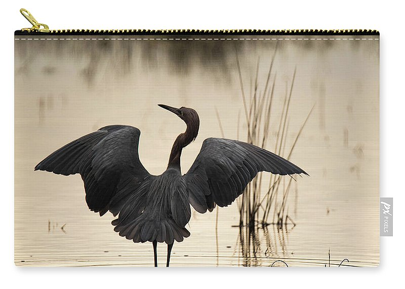 Florida Carry-all Pouch featuring the photograph Reddish Egret by Deborah Kainauskas