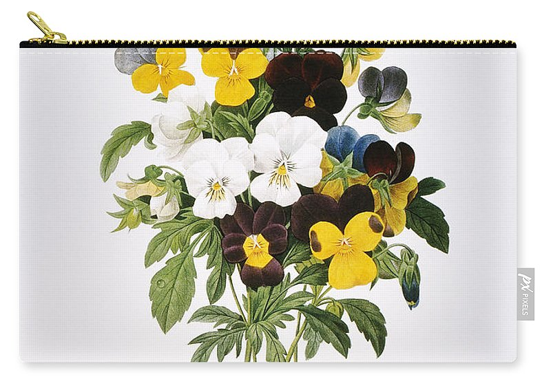 1833 Carry-all Pouch featuring the photograph Redoute: Pansy, 1833 by Granger