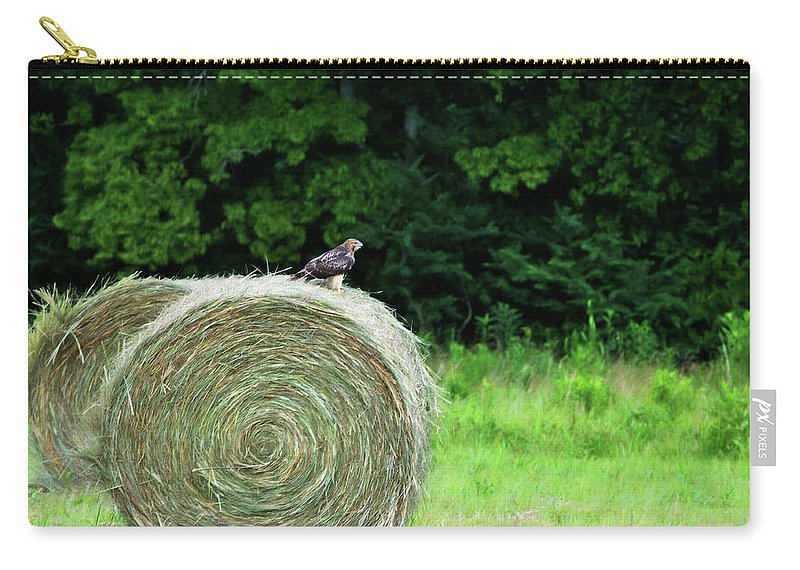 Birds Carry-all Pouch featuring the photograph Redtailed Hawk by Jan Amiss Photography