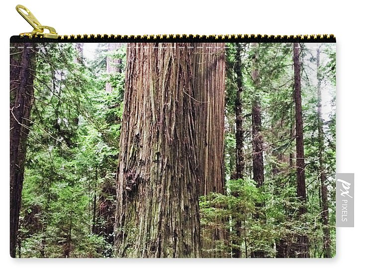 California Redwood Trees Carry-all Pouch featuring the photograph Redwood4 by George Arthur Lareau