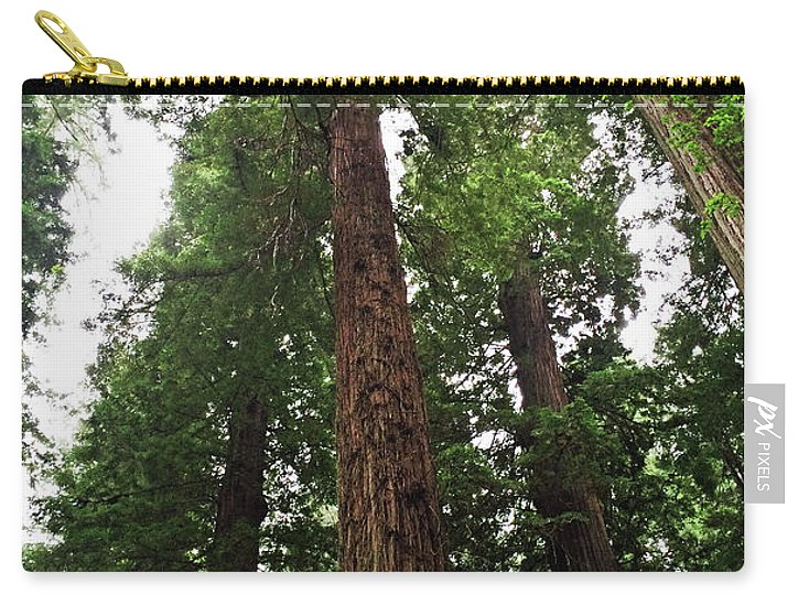 California Redwood Trees Carry-all Pouch featuring the photograph Redwood6 by George Arthur Lareau