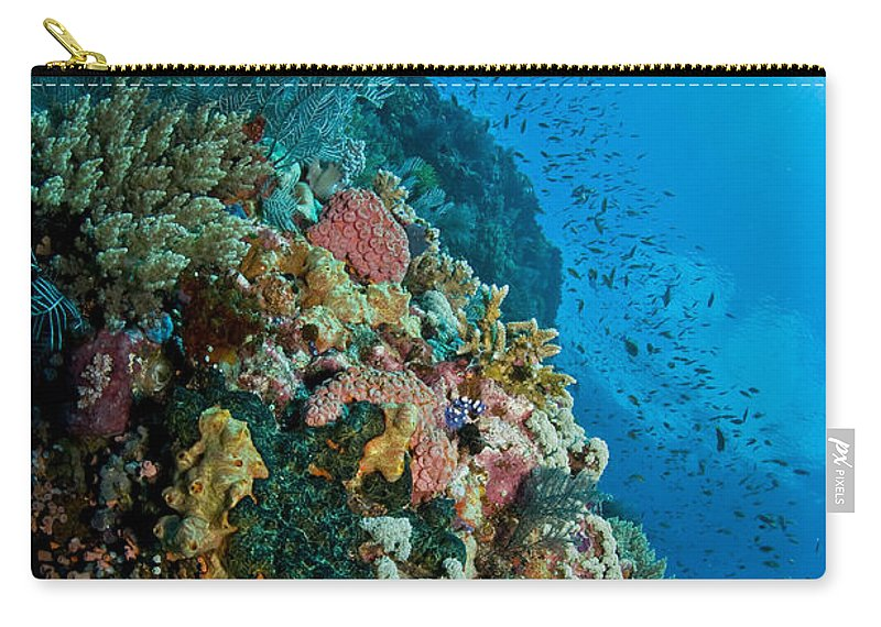 Indonesia Carry-all Pouch featuring the photograph Reef Scene With Corals And Fish by Mathieu Meur