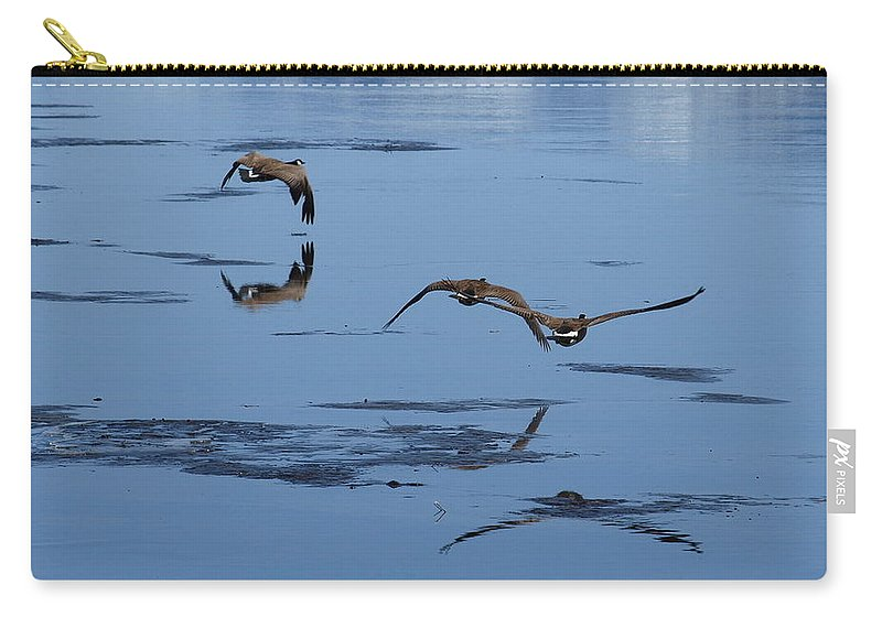 Birds Carry-all Pouch featuring the photograph Reflecting Geese by DeeLon Merritt