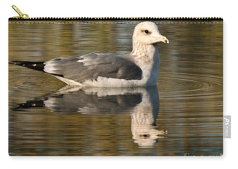 California Scenes Carry-all Pouch featuring the photograph Young Gull Reflections by Norman Andrus