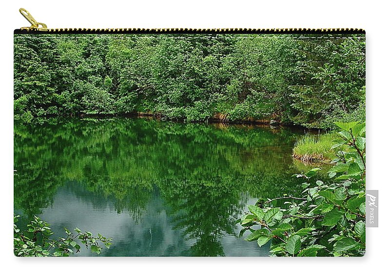 Trees Carry-all Pouch featuring the photograph Reflection by Diana Hatcher