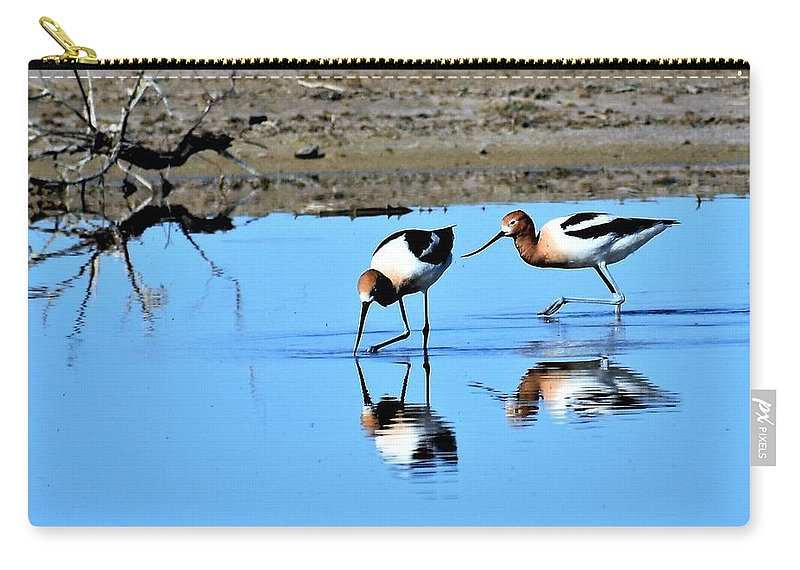 Amaerican Avocet Carry-all Pouch featuring the photograph Reflections by Linda Burns