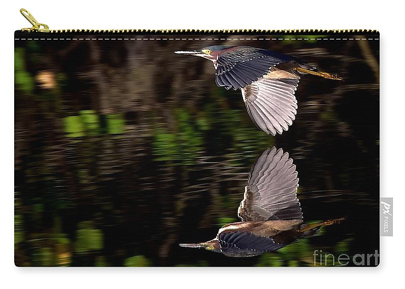 Reflections Carry-all Pouch featuring the photograph Reflections by Lisa Renee Ludlum